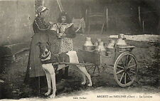 ARGENT SUR SAULDRE (18) voiture attelage de chien de la laitière gros plan