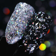 Holographic Silver Flakes Nail Sequins Glitter Powder Paillette Born Pretty Tips