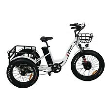 Electric Tricycle 24 Inch Fat Tire Electric Trike 3 Wheel Ebikes 48V 500W