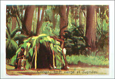 IMAGE CARD Congo Forêt Vierge Pygmées Old-growth forest Pygmy peoples Africa 60s