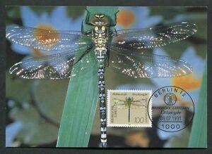 GERMANY MK 1991 DRAGONFLIES LIBELLULES LIBELLEN CARTE MAXIMUM CARD MC CM /m71
