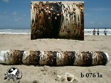 WHOLESALE 10 MIX SET CORD & BEAD BRACELETS surf/ b076la