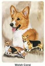 New Welsh Corgi Poker Playing Cards Deck of Card By Ruth Maystead Corgis Wec-Pc