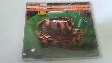 "THE CRANBERRIES ""ANIMAL INSTINCT"" CD SINGLE 4 TRACKS PRECINTADO SEALED"