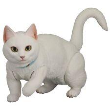 kaiyodo Japan Sofubi Toy Box White Cat Munchkin Sofubi Figure