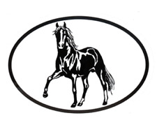 Equine Breed Oval Car Window Decal Black & White Sticker - Paso