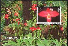 Jersey 2004 Flores/plantas Orquídeas// naturaleza 1v m/s n26133