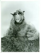 ALF THE ALIEN PORTRAIT ORIGINAL 1987 NBC TV PHOTO
