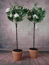2 künstliche Rosenbäume 100cm getopft weiß Rosen Kunstblumen Kunstrosen Rose
