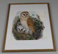 Owl erotik Here's the