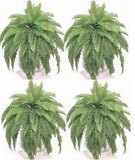 """4 BOSTON FERN 48"""" X 88 SILK LEAF BUSH PLANT ARTIFICIAL ARRANGENENT PALM TREE IVY"""