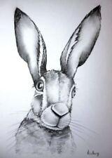 Artist White Animals Art Drawings