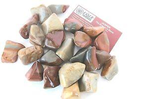 Six Jasper Desert Tumbled Stones 35-40mm Reiki Healing Crystals Protection