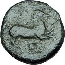 MARONEIA Thrace 400BC Authentic Ancient Greek Coin w HORSE & WINE GRAPES i65964