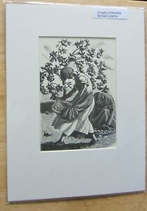 CLARE LEIGHTON. `A  LAPFUL OF WINDFALLLS` ORIGINAL 1935 MOUNTED PRINT. ART