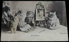 "OLD POSTCARD OF CATS / KITTENS ""ART STUDENTS"""