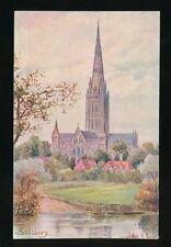 Wilts Wiltshire SALISBURY Arthur Payne Artist c1920/30s? PPC