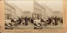 STEREOSCOPIE Stereoview KILBURN DANEMARK MARCHE POISSON