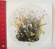 Aufkleber/Sticker: Kytta - Blumen Pflanzen (20031646)