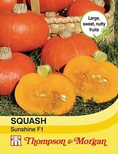 Thompson & Morgan - Vegetables - Squash Sunshine F1 Hybrid (Winter) - 7 Seed