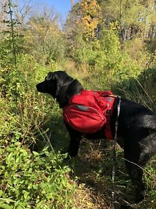 RUFFWEAR, Palisades Dog Pack, Medium, Hiking Backpack with Water Bladders,