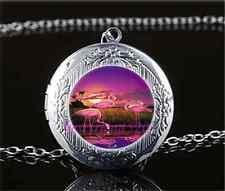 Flamingo Bird Photo Cabochon Glass Tibet Silver Locket Pendant Necklace