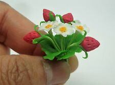 Strawberry Plant For Dolls House Miniature Garden