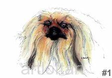Pekingese #1 Dog Art Print Signed A Borcuk Painting 8x10