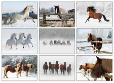 Equestrian Christmas Cards - Pack Of Nine