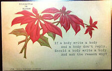 Early 1900's Postcard Drawn of Poinsettia in Bloon W/ Poem Embossed