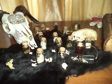 Oddities and Curiosities Curio Cabinet Starter Collection Random Selection