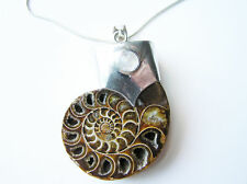 LARGE Silver Set Madagascan Ammonite Necklace - With Moonstone