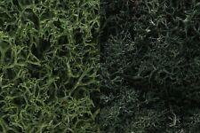 Woodland Scenics [Woo] Dark Green Lichen Mix 3 Quart L168 Wool168