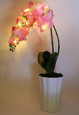 LUMIDA Flora leuchtende Blumen Orchidee Übertopf Timer H. ca. 60 cm Pink