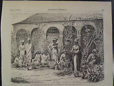 FLOWER SELLERS MARKET WASHINGTON D C BLACK AMERICANA HARPER'S WEEKLY 1870