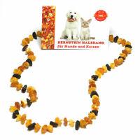 Bernsteinkette Halsband für Hunde und Katzen - Länge: ca.35 cm - Bernstein/Amber