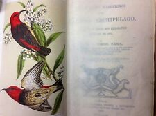A NATURALIST'S WANDERINGS IN THE EASTERN ARCHIPELAGO FORBES NEW GUINEA