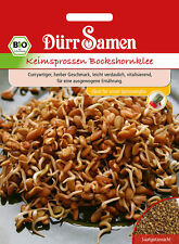 4071 Dürr BIO Keimsprossen Bockshornklee ca.60g Curryartiger herber Geschmack