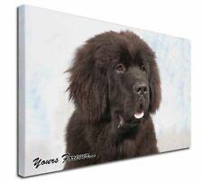 More details for newfoundland dog 'yours forever x-large 30