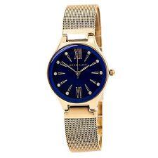 Anne Klein 2418CBRG Women's Blue MOP Dial Mesh Bracelet Watch
