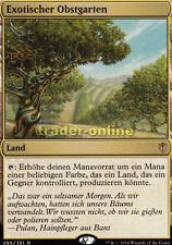 Exotiques verger (exotic Orchard) Commander 2016 Magic