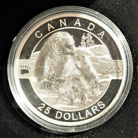 CANADA 2013 $25 PROOF 1oz SILVER COIN - POLAR BEAR