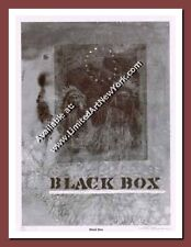 Black Box by Carl Beam