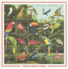 Guyana - 1990 - Tropical Birds -  Sheet Of 20 - MNH