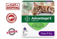 Bayer Advantage Ii Flea Prevention for large Cats 2 doses over 9 lb New Release