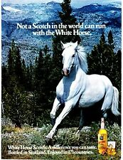 Original Print Ad-1977 Not a SCOTCH In The World Can Run With The WHITE HORSE !