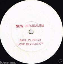 """12"""" : PAUL PLUMMER-love revolution   (hear)    reggae"""
