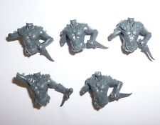 Aelves Sisters of the Thorn/Wild Riders Torsos B – G2216