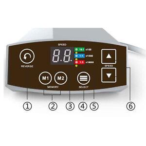 COXO Dental LED Brushless Mini Electric Micro Motor System C-puma+1:5 Handpiece
