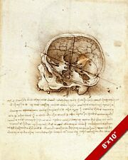 LEONARDO DA VINCI SKETCH PAINTING OF HUMAN SKULL ANATOMY REAL CANVAS ART PRINT